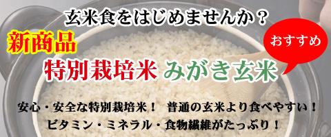 特別栽培米みがき玄米